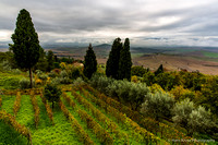 Tuscan landscape seen from Pienza