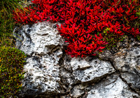 Dolomites East September 2014