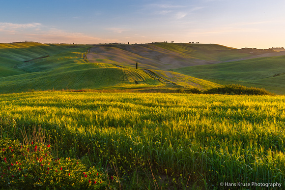 Morning sun over Tuscan landscape
