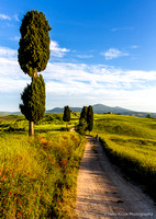 Photographer in Tuscan landscape